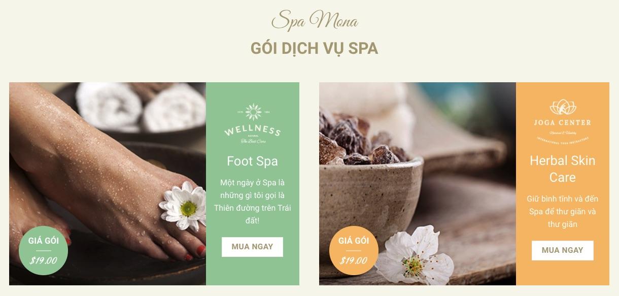 Dịch vụ thiết kế website spa tại Nam Định